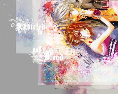 Обои Vampie knight - yuki and zero