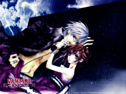Обои Vampire Knight - Yuki and Zero