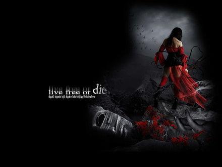 Обои live free or die