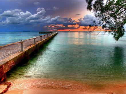Обои Пирс ведущий в голубую воду, ветка дерева в углу, красноватый закат