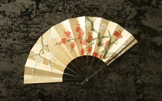 Обои Японский веер