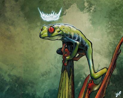 Обои Принцесса-лягушка