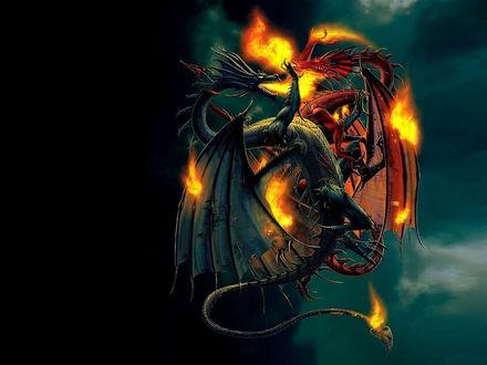 Обои Два дракона дерутся в воздухе, оба горят