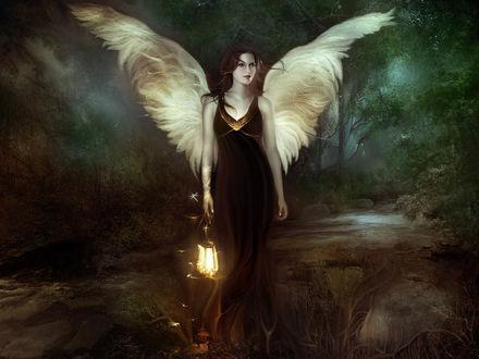 Обои Ангел с фонарем идет по лесу