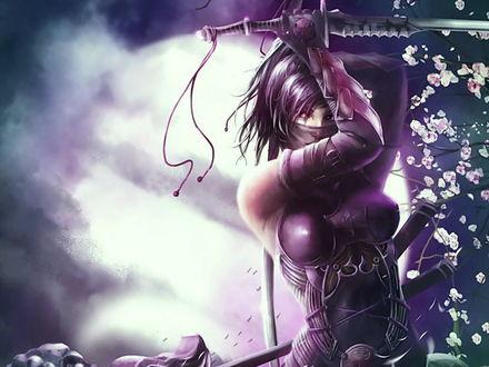 Обои Девушка ассасин в фиолетовых доспехах