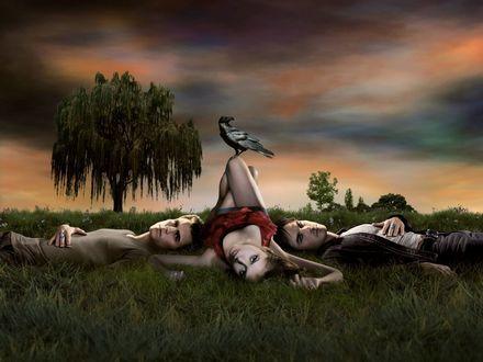 Обои Елена из сериала 'Дневники Вампира' с братьями Сальваторе и вороном на колене
