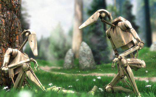 Обои Два робота на привале