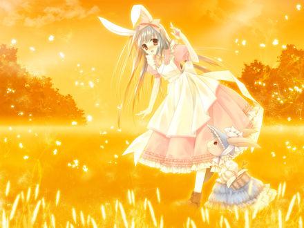Обои Девушка и Кролик