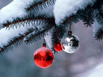 Обои Новогодние шары на ёлке