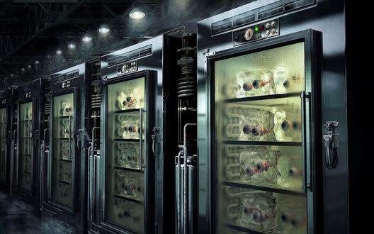 Обои Глаза замороженные лежат в специальных холодильниках  (лаборатория маньяка?)