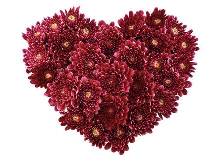 Обои Сердце из цветов