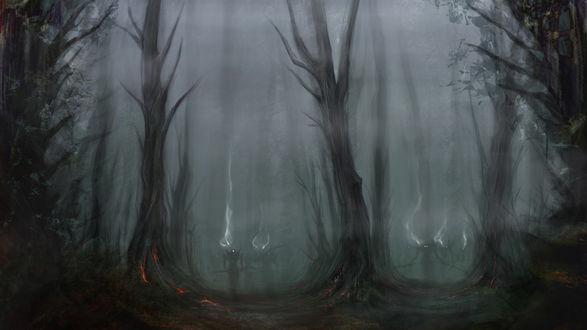 Обои Из темного леса надвигаются злобные призраки