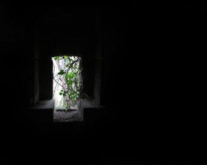 Обои Вентиляционное окно в подвале, через которое видна трава