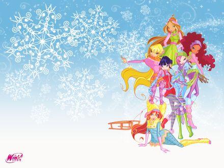 Обои Winx club зимние костюмы