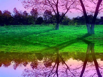 Обои Рассвет в фиолетовых тонах