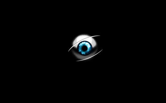 Обои Глазное яблоко на черном фоне