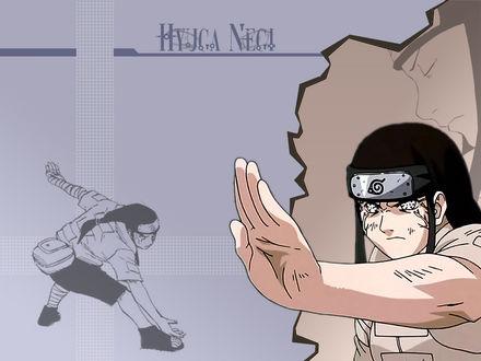 Обои Hyuga Negi