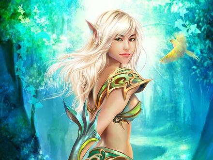 Обои Красивая эльфийка