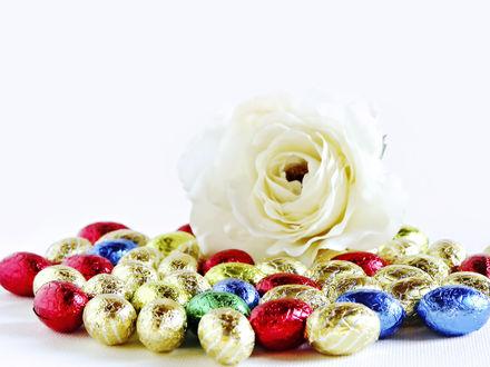 Обои Роза и пасхальные яйца