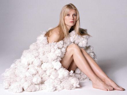 Обои Gwyneth Paltrow