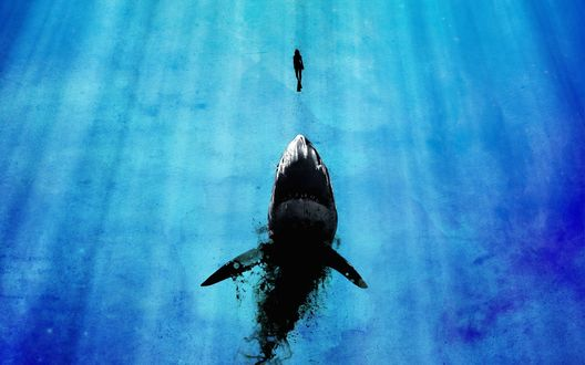 Обои Акула всплывает вслед за девушкой аквалангистом