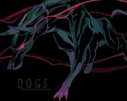 Обои Красноглазая собака (DOGS Stray dogs howling in the dark)