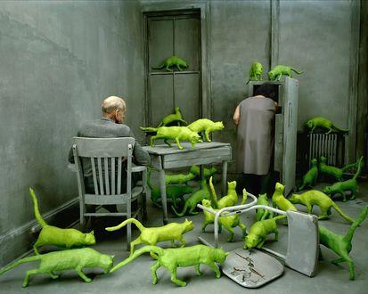 Обои Зелёные..пластилиновые... кошки-страхи наступившей старости... Здесь и кошка по имени Одиночество, кошка - Тоска (найди её ..она зелёная...), кошка-Скряга.... Пустота....