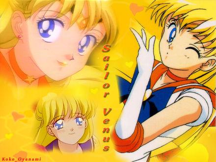 Обои Sailor Venus