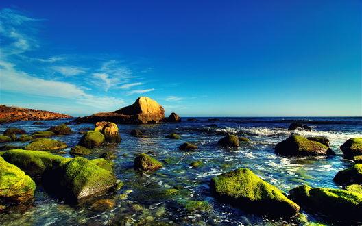 Обои Камни покрытые мхом среди воды