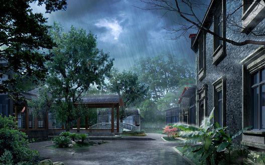 Обои Дождливый день