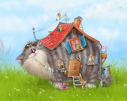 Обои Кошкин дом