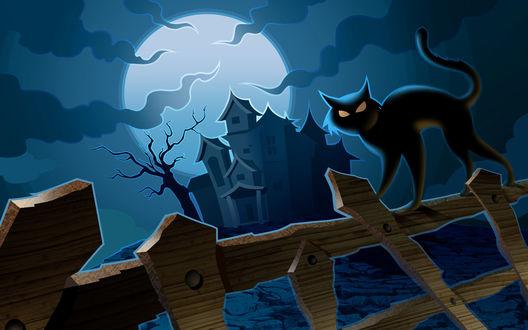 Обои Черная кошка выгнула спину на заборе на фоне мрачного дома и луны