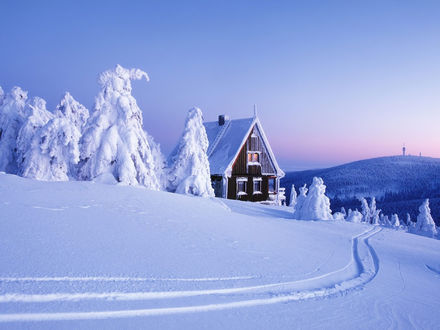 Обои Снежная зима