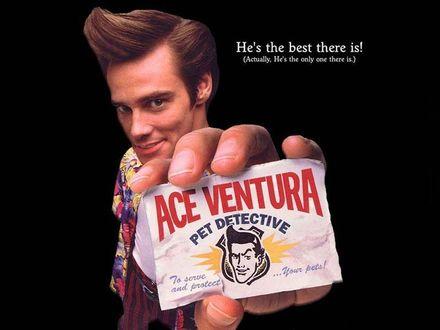 Обои Ace Ventura: Pet Detective