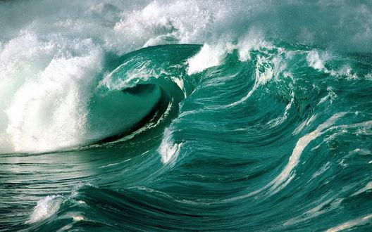 Обои Гребень волны