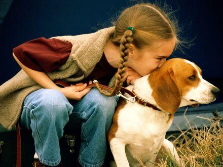 Обои Девочка с собакой
