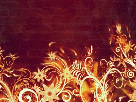 Обои Огненные цветы