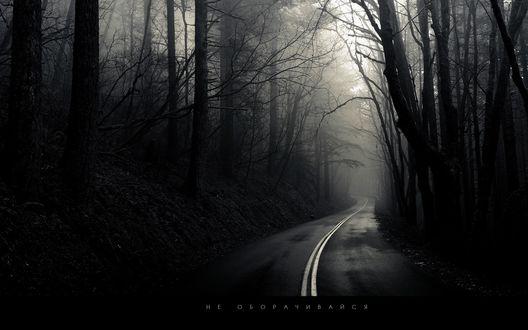 Обои Темная дорога (не оборачивайся)