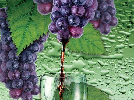 Обои Виноградный сок льется в бокал из грозди винограда