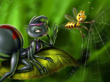 Обои Паучиха тянет с паутины к себе пчёлку