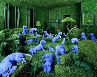 Обои Какие-то галлюцинации-в зелёной комнате разлеглись синие собаки