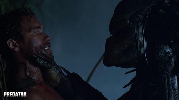 Обои Хищник и Датч (Арнольд Шварцнегер)  из фильма «Хищник» (Predator)