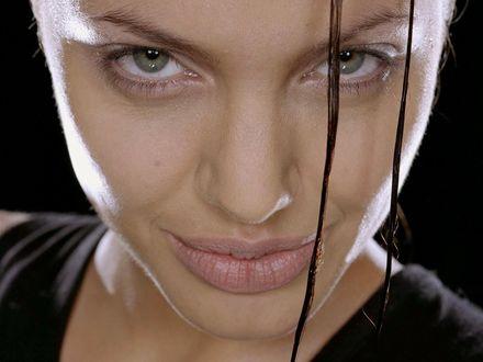 Обои Джоли Лара Крофт: Расхитительница гробниц