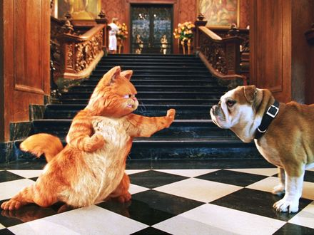 Обои Гарфилд останавливает собаку в филмье «Гарфилд / Garfield»
