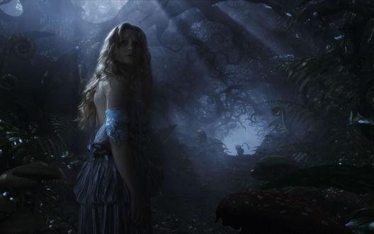 Обои Алиса в дремучем лесу, вдали виднеется силуэт чеширского кота из фильма Алиса в стране чудес (Alice in Wonderland)