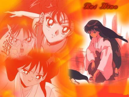 Обои Грустная Rei Hino кормит ворону (Rei Hino)