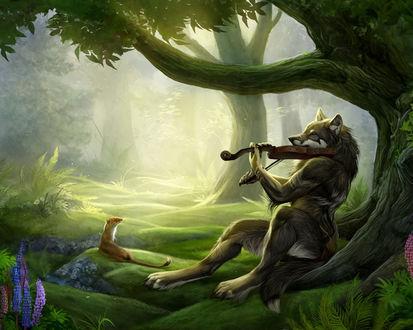 Обои Волк музицирует, его внимательно слушает зверёк, похожий на ласку
