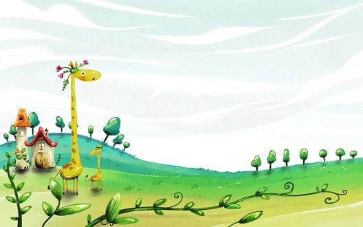 Обои Два жирафика