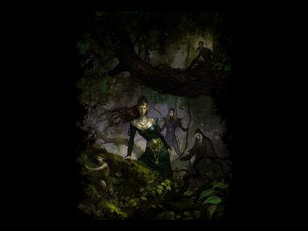 Обои Из лесной чащи выступают несколько волшебниц