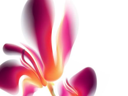 Обои Фантастический цветок